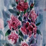 Нокаут Роза 1